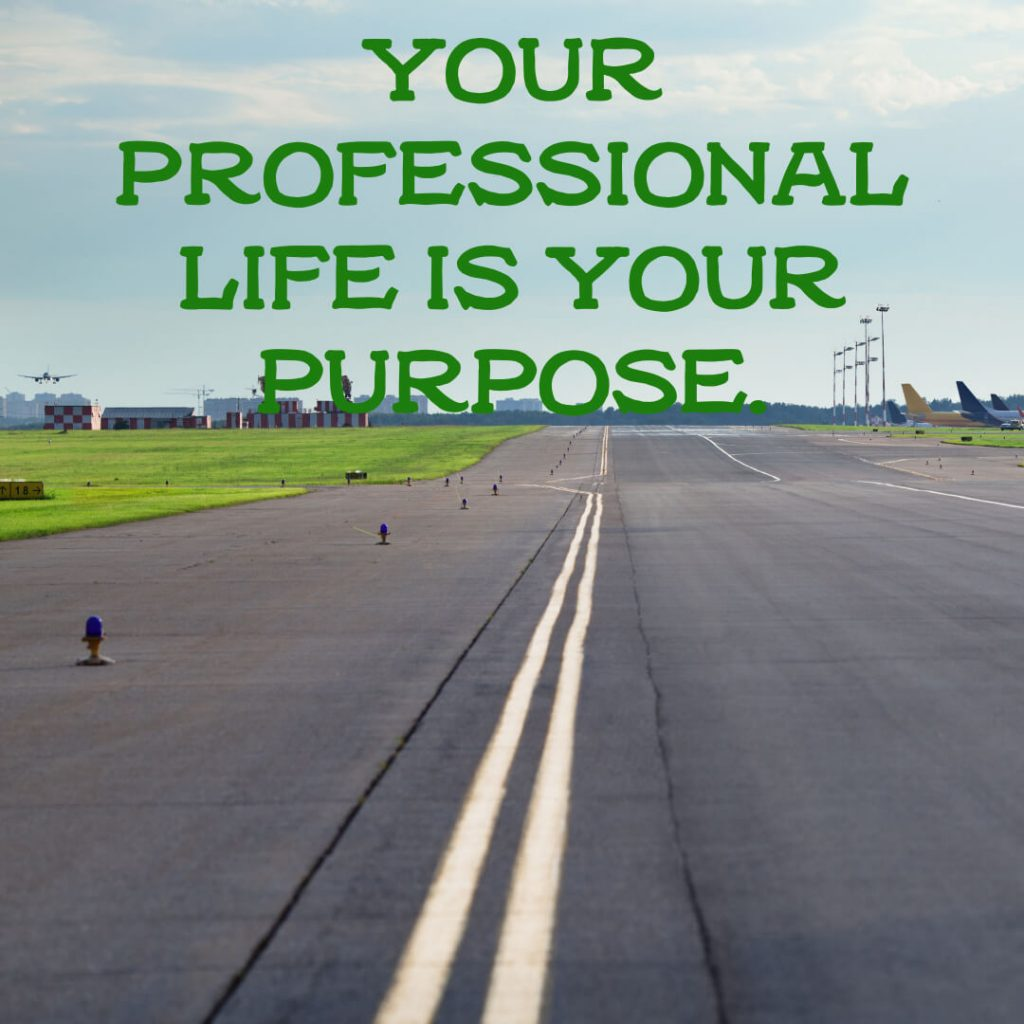 Your professional life is your purpose